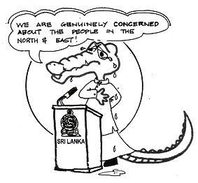 Alligator_cartoon
