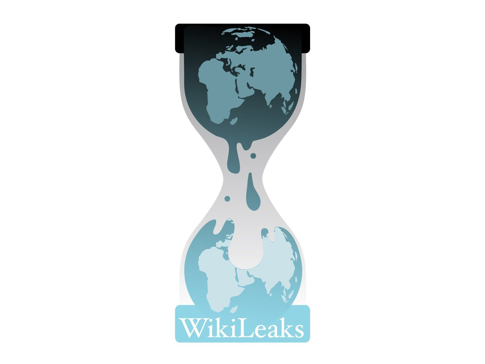 Image result for wikileaks logo